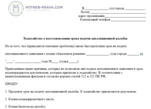 Выводы ВС РФ о восстановлении срока на подачу апелляционной жалобы