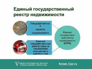 ЕГРН: новые правовые категории