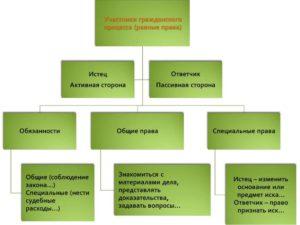 Обязанности истца в арбитражном процессе