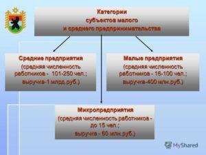 Субъект среднего предпринимательства: особенности и преимущества