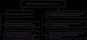Обособленные подразделения – как выбрать между филиалом и другими вариантами