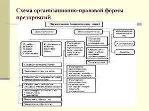 Организационно-правовые формы предприятий: как сделать выбор