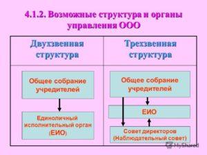 Какие органы управления действуют в ООО