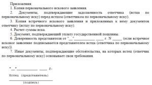 Специальные требования к исковому заявлению