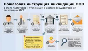 Срок ликвидации ООО: изменения с 2017 года