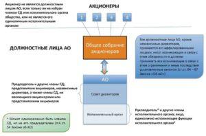 Как создать совет директоров АО