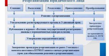 Преобразование АО в ООО. Пошаговая процедура
