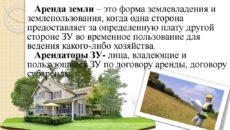 Аренда земельного участка: что нужно знать о сделке