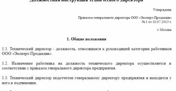 Должностная инструкция директора ООО: что включить в документ